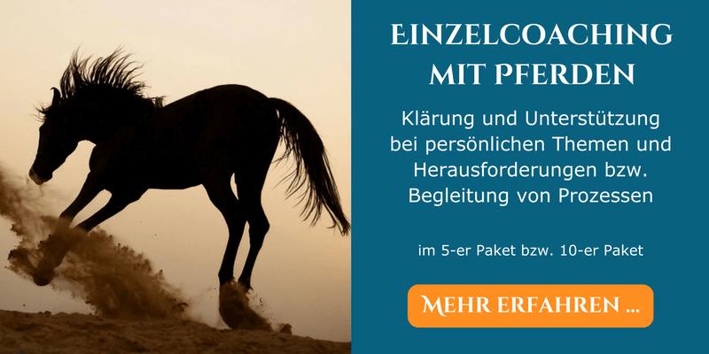 Coaching mit Pferden Manuela Nachtmann
