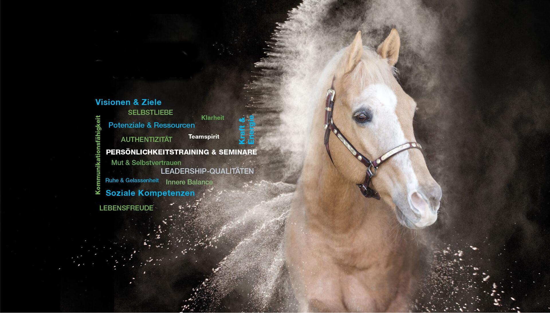 Mit Pferden stärken - Manuela Nachtmann